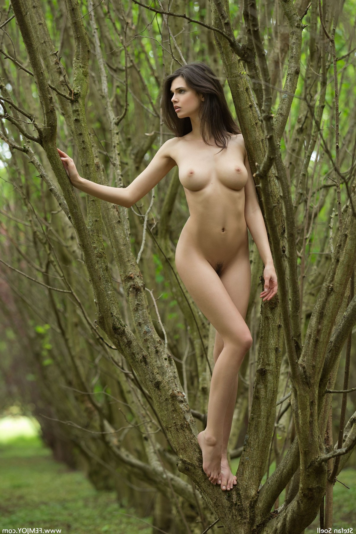 pornô jovem grátis